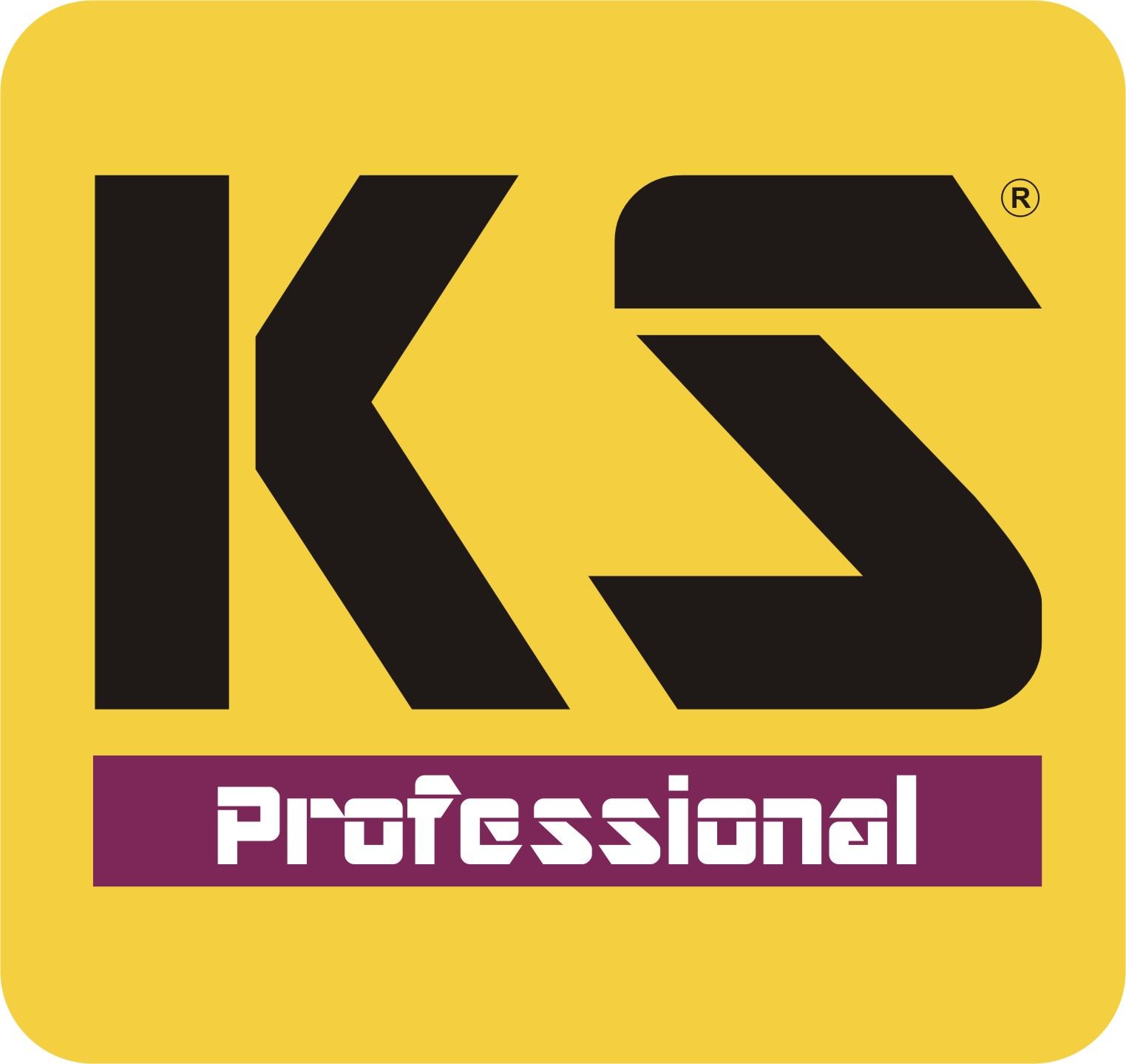 KS Professional